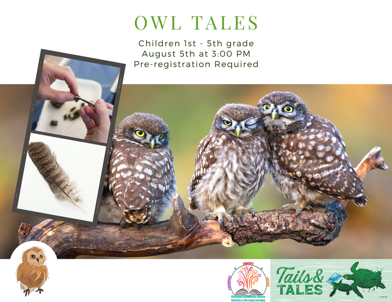 Owl Tales aug 5th.png