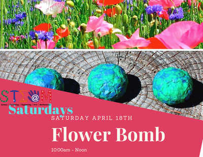 STEAM Saturday - Flower Bomb